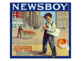 Redlands, California, Newsboy Brand Citrus Label Posters by  Lantern Press