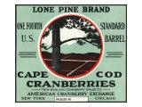 Cape Cod, Massachusetts, Lone Pine Brand Cranberry Label Prints