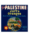 Orlando, Florida, Genuine Palestine Brand Jaffa Orange Label Posters by  Lantern Press