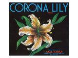 Corona, California, Corona Lily Brand Citrus Label Prints by  Lantern Press