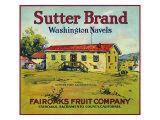 Fairoaks, California, Sutter Brand Citrus Label Poster by  Lantern Press