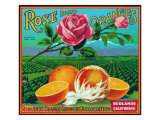 Redlands, California, Rose Brand Citrus Label Prints by  Lantern Press