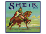 Colton, California, Sheik Brand Citrus Label Posters by  Lantern Press