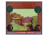 Lindsay, California, Suburban Brand Citrus Label Prints by  Lantern Press