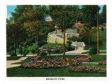Peoria, Illinois, View of Bradley Park Prints by  Lantern Press