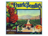Duarte, California, Duarte Beauties Brand Citrus Label Prints by  Lantern Press