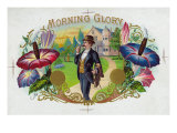 Morning Glory Brand Cigar Box Label Posters by  Lantern Press