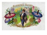 Morning Glory Brand Cigar Box Label Posters by  Lantern Press