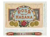 Rosa de la Habana Brand Cigar Box Label Posters