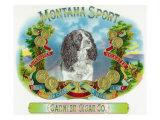 Montana Sport Brand Cigar Box Label Art by  Lantern Press