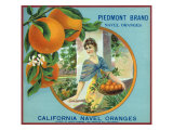 North Pomona, California, Piedmont Brand Citrus Label Prints