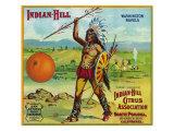 North Pomona, California, Indian-Hill Brand Citrus Label Prints by  Lantern Press