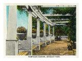 Peoria, Illinois, Bradley Park View of the Pompeian Garden Posters