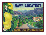 Tustin, California, Navy Greatest Brand Citrus Label Prints by  Lantern Press
