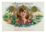 Havana Rose Brand Cigar Box Label Posters by  Lantern Press