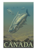 Canada, Salmon View Posters by  Lantern Press