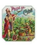 Pride of Cuba Brand Cigar Box Label Prints