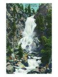 Steamboat Springs, Colorado, View of Fish Creek Falls Posters