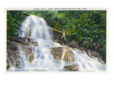 Great Smoky Mts National Park, TN, View of a Hiker Ascending Laurel Falls Print