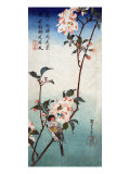 Small Bird on a Branch of Kaidozakura, Japanese Wood-Cut Print Prints
