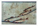 River Trout, Japanese Wood-Cut Print Print
