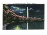 Washington DC, View of the Washington Monument with Cherry Trees at Night Print by  Lantern Press