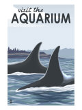 Visit the Aquarium, Orca Fins Prints by  Lantern Press