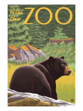 Visit the Zoo, Bear in the Forest Prints by  Lantern Press