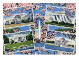 Washington, DC, Views Memorials, Monuments, White House and Blossoming Cherry Trees Posters by  Lantern Press