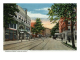 Binghamton, New York, Northern View down Chenango Street Art by  Lantern Press