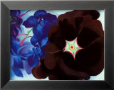 Black Hollyhock Blue Larkspur, 1930 Prints by Georgia O'Keeffe