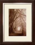 Enchanted Path Art by Paul Kozal