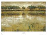 Tiverton Lake Poster von Jack Roth