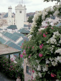 Green-tiled Roof and Minaret in the Medina, Fes, Morocco Photographic Print by John & Lisa Merrill