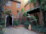 Garden Courtyard in Hotel Palais Salaam, Morocco Photographic Print by John & Lisa Merrill