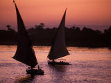 Traditional Feluccas Set Sail on the Nile River, Egypt Photographic Print by Nik Wheeler