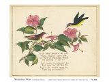 Nectarina Verse Art by Nathaniel Tweet