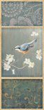 Nuthatch Posters by Danhui Nai