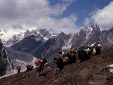 Yak Drivers Above the Kangshung, Tibet Fotografisk tryk af Vassi Koutsaftis