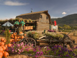 Log Barn and Fruit Stand in Autumn, British Columbia, Canada Photographic Print by Walter Bibikow