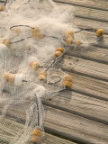 Fishing Nets on Town Pier, Loyalist Cays, Abacos, Bahamas Photographic Print by Walter Bibikow