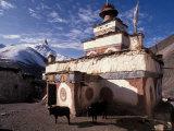 Vassi Koutsaftis - Stupa With Yaks at Dolpo, Nepal Fotografická reprodukce