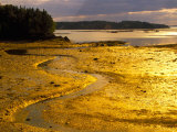 Outgoing Tide at Sunset on Campobello Island, New Brunswick, Canada Photographic Print by Julie Eggers