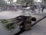 Selling Sugar Cane, Vietnam Photographic Print by Keren Su