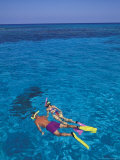 Snorkeling in Clear Waters, Bahamas, Caribbean Fotografie-Druck von Greg Johnston