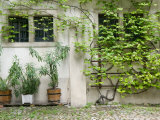 Courtyard off Psoriases, Graz, Styria, Austria Photographic Print by Walter Bibikow