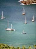 Yachts Anchor in British Harbor, Antigua, Caribbean Fotografiskt tryck av Alexander Nesbitt
