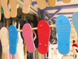 Beach Shoes, Bourg Des Saintes, Grande Terre, Guadaloupe, Caribbean Photographic Print by Walter Bibikow