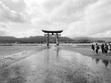 The Torri Gate, Myajima, Japan Photographic Print by Walter Bibikow