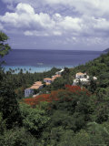 Villas on the Hillside, Saint Croix, Caribbean Photographic Print by Greg Johnston